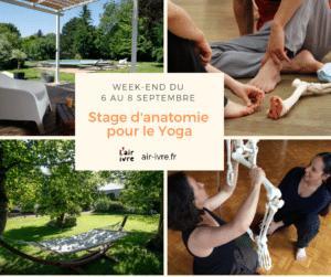 stage anatomie pour le yoga