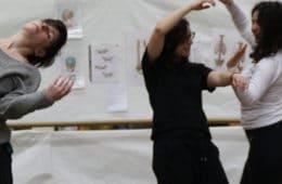 Dimanche 7 avril : Stage de Body-Mind Centering® et danse-improvisation