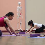Jeudi 26 septembre de 19h à 21h : Atelier de yoga débutant (postures de base)
